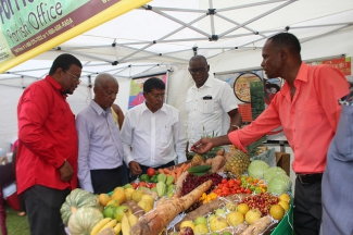 Fruits and vegetables from Jamaica during World Food Day 2013