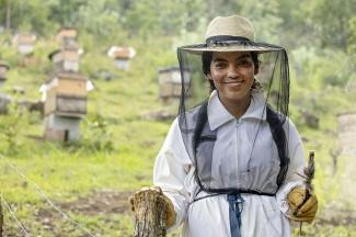 Beekeeper in Guatemala