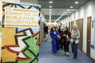 Ceremonia de apertura de la 44.ª reunión del Comité de Seguridad Alimentaria Mundial, Sede de la FAO.