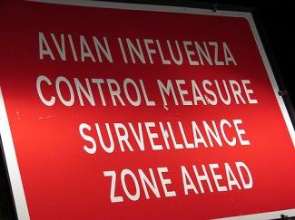Avian Influenza Surveillance Area