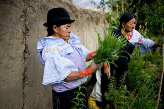 Campesinas ecuatorianas