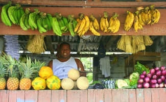 Fruit Stall in the Dominican Republic