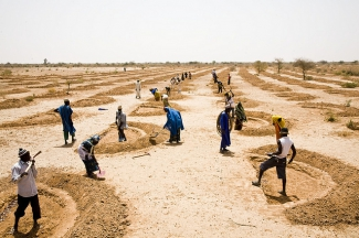 Stormwater retention system implemented in Niger in 2012
