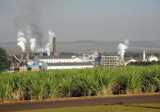 Fábrica de Azúcar y Etanol en Brasil