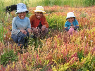 Mujeres rurales en Bolivia