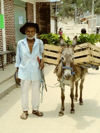 A farmer in Mexico