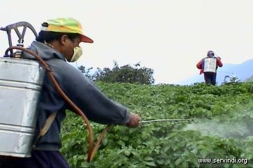 la salud en bolivia: