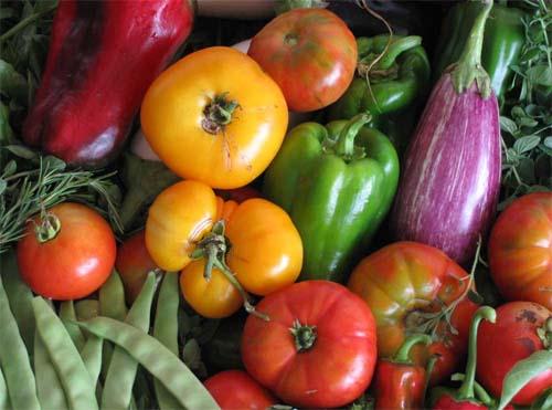 Costa Rica Inicia Proceso De Reconocimiento De Agricultura Orgánica Agronoticias Actualidad Agropecuaria De América Latina Y El Caribe Organización De Las Naciones Unidas Para La Alimentación Y La Agricultura