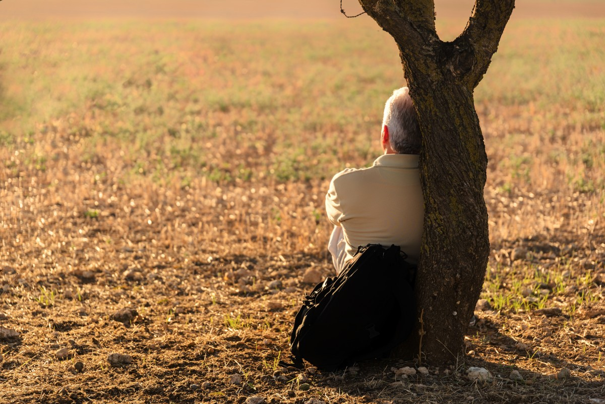 Hombre sentado en el campo