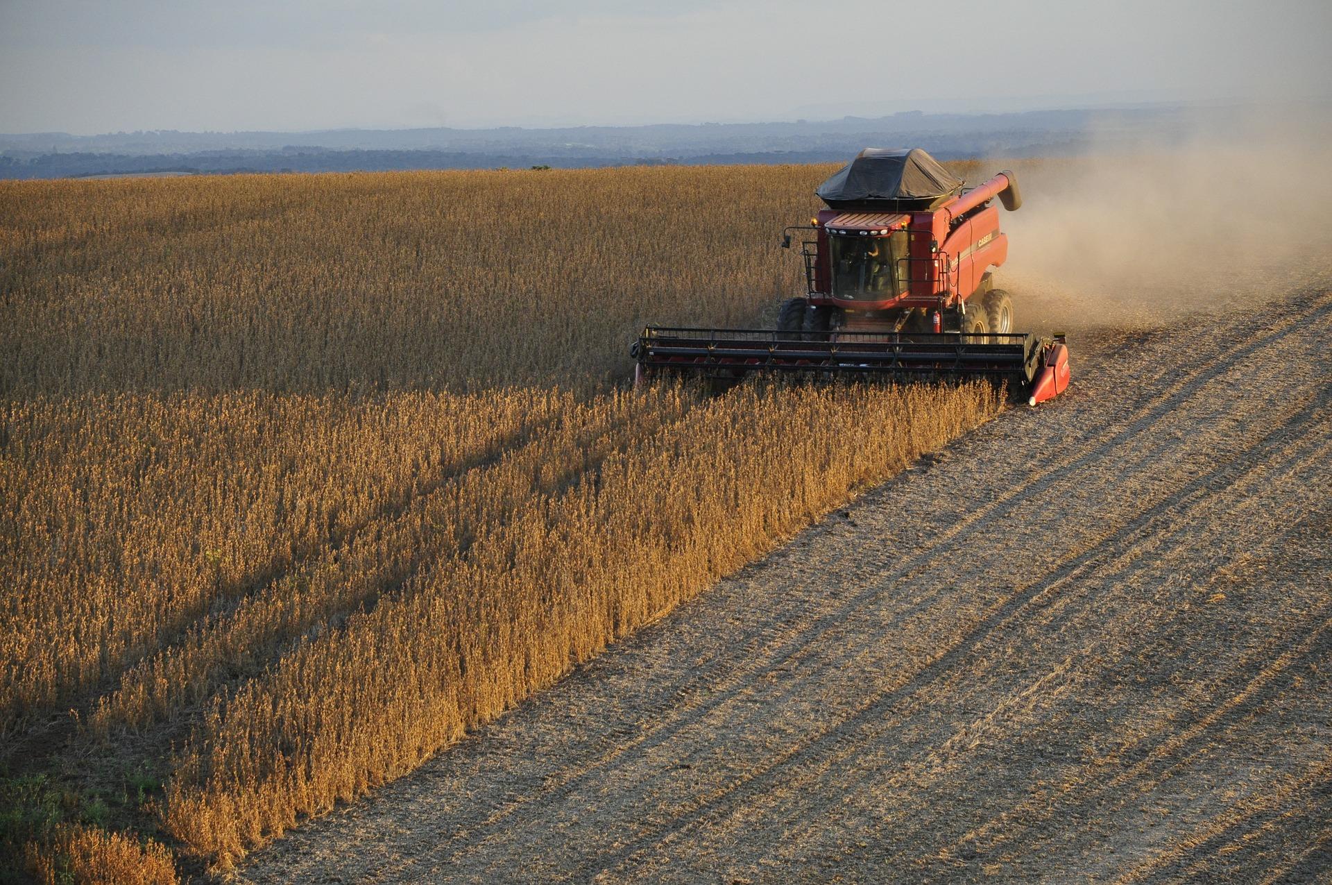El boom de la producción agrícola en Brasil | Agronoticias
