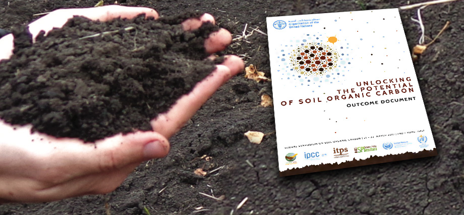 Global soil partnership fao food and agriculture for Soil organic carbon