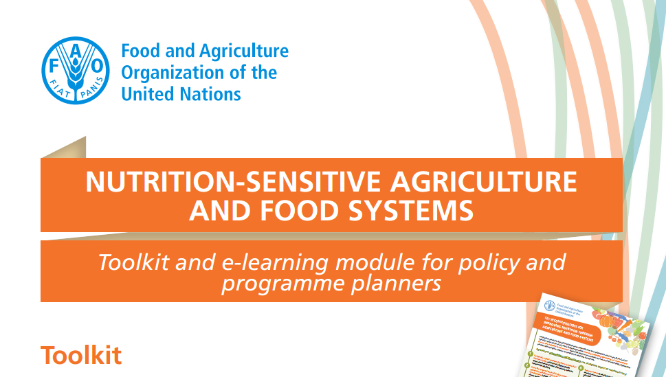 Toolkit on Nutrition-sensitive Agriculture and Food Systems