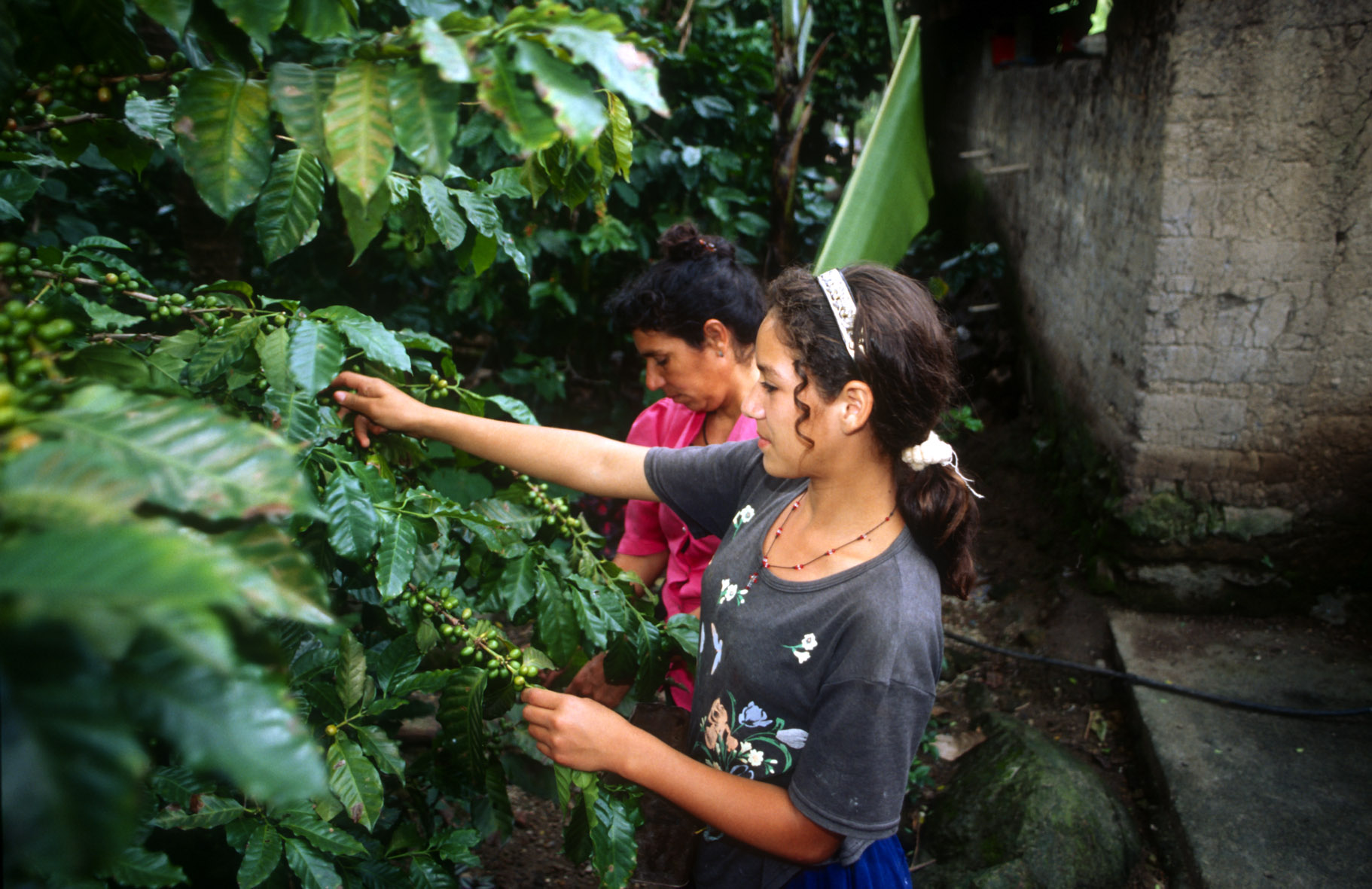 Campioning Sustainable Agriculture in the Caribbean region of Colombia