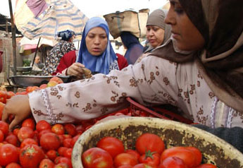 Sécurité sanitaire et qualité des aliments