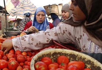 نوعية الأغذية وسلامتها