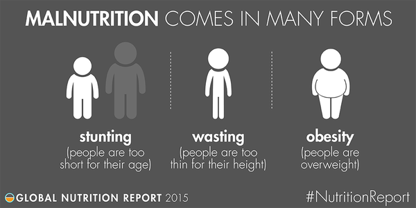 """Ranging """"from too little to too much"""": Malnutrition is complex 