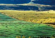 粮农组织-全球环境基金