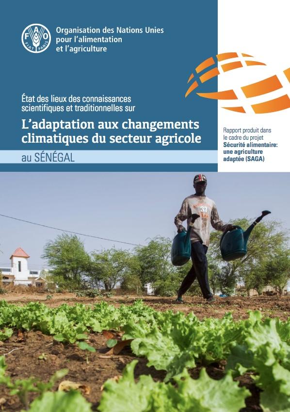 Rapport Senegal 2021