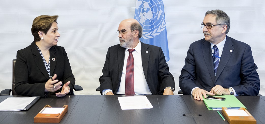 New partnership between FAO and UNFCCC climate body'