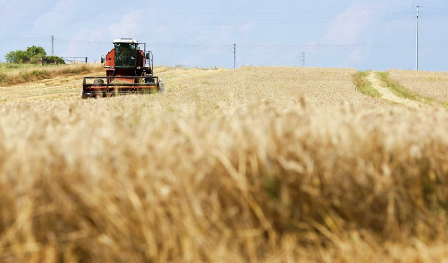 Increasing food production without damaging the environment'