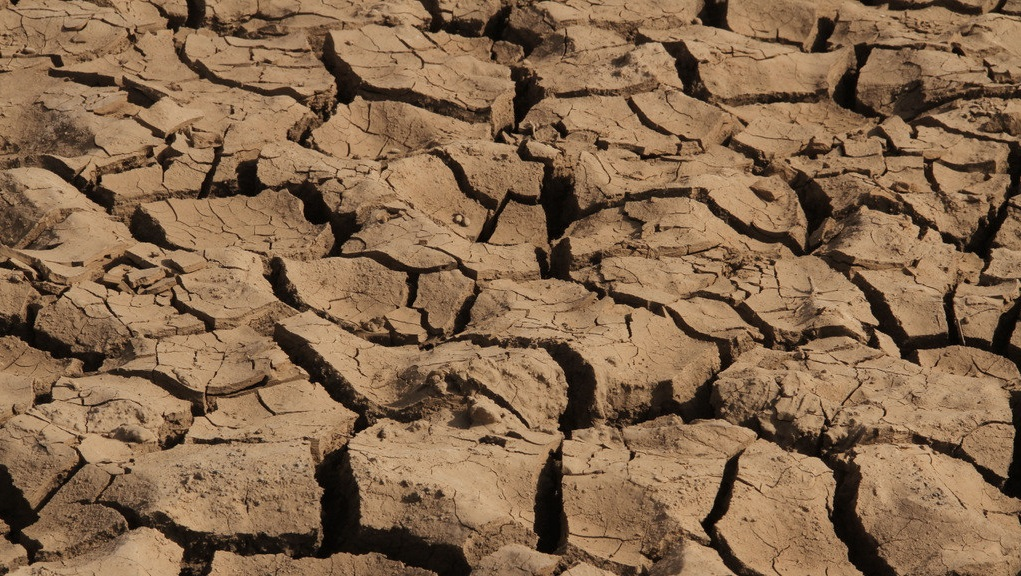 World needs to pre-empt devastating drought impacts through better preparedness'