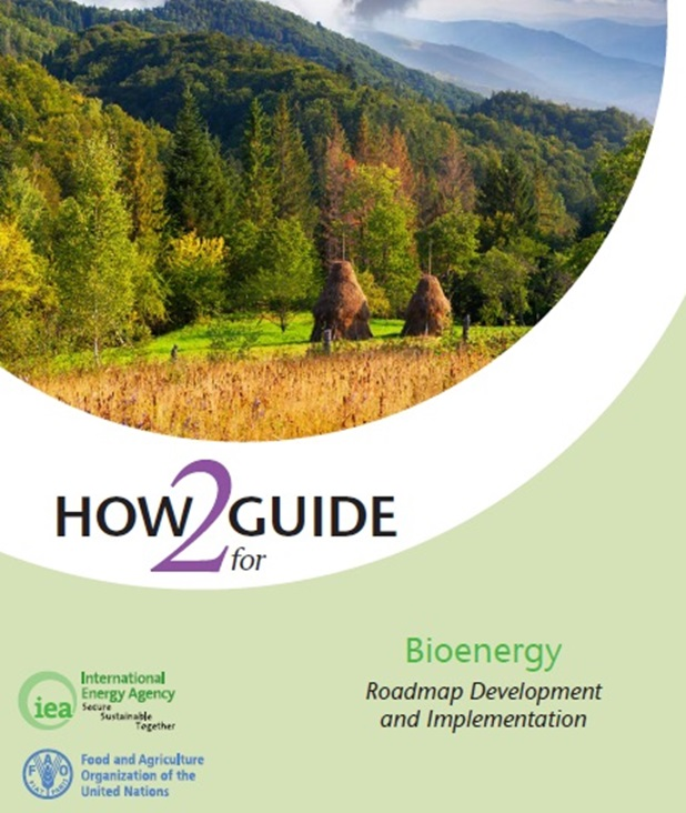 New bioenergy roadmap guide released jointly by IEA and FAO'