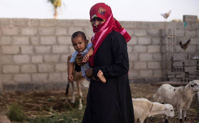 EU and FAO team up to address alarming food insecurity in Yemen'