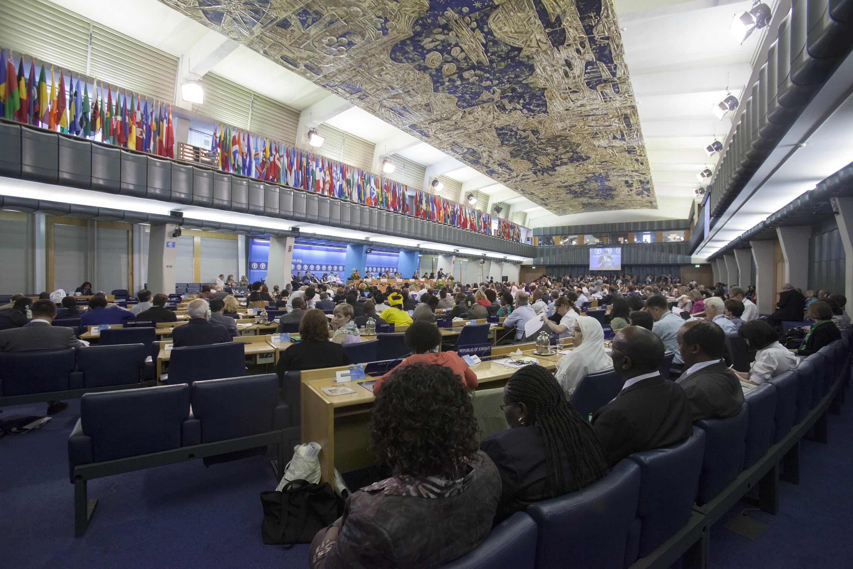 UNFAO HQ Plenary Hall