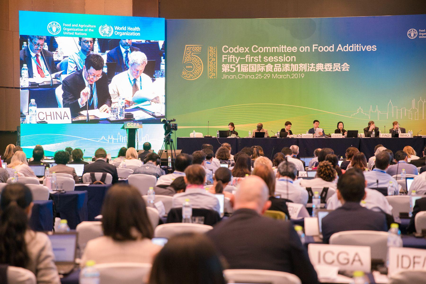 CCFA51-plenary