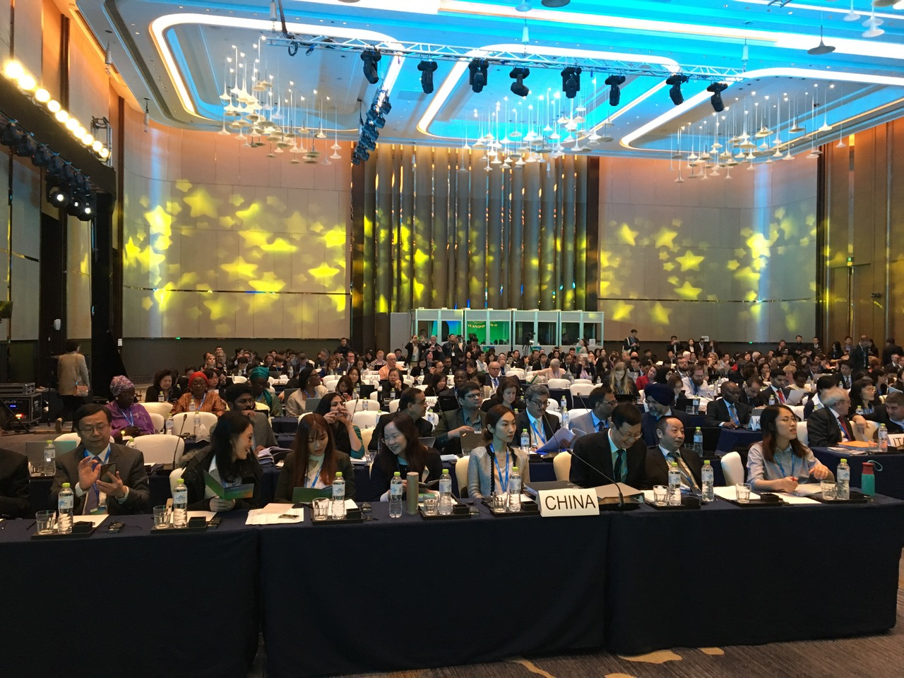 CCFA51 plenary