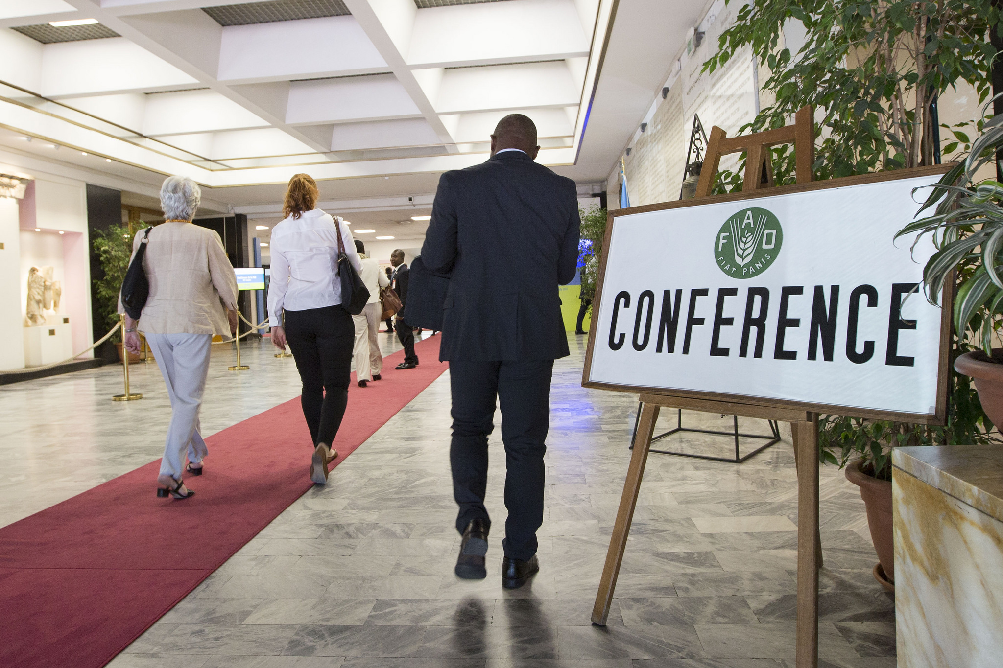 FAO Conference