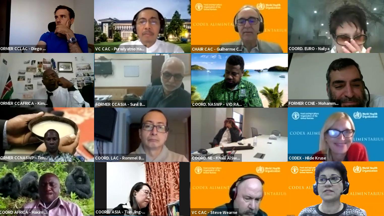 Codex Regional Coordinators workshop November 2020