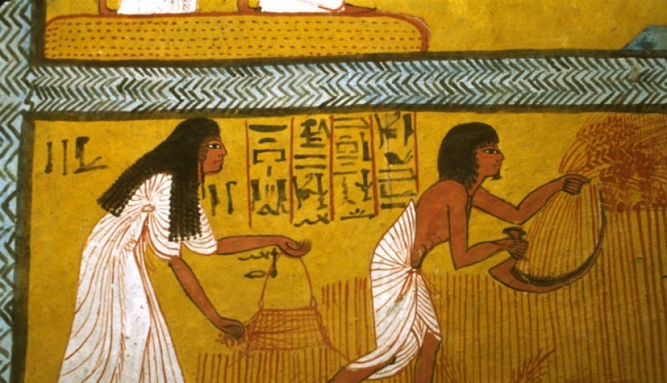 Ancient Egyptian Agriculture Food And Agriculture Organization Of The United Nations