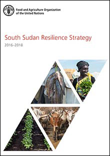 South Sudan Resilience Strategy 2016–2018
