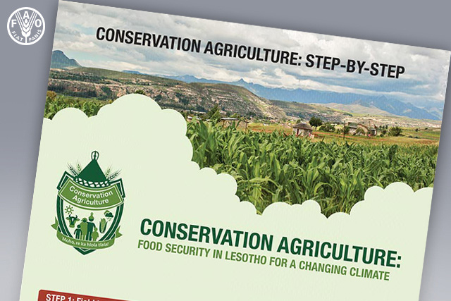 Conservation agriculture: step-by-step - INFOGRAPHIC