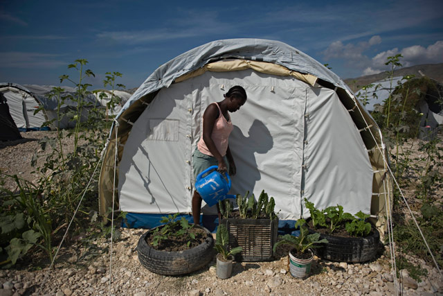 Haiti earthquake: one year on