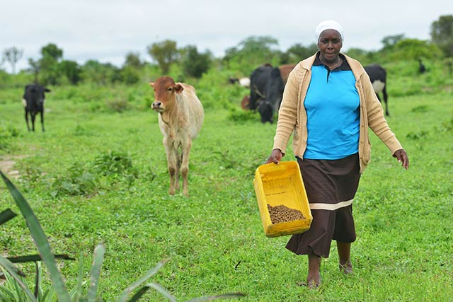 Easing the impact of drought in Kenya – Alice's story