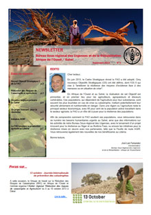 Newsletter REOWA - N. 5, Septembre 2013