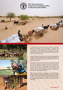 Regional Resilience, Emergency and Rehabilitation Office for West Africa/Sahel (REOWA)