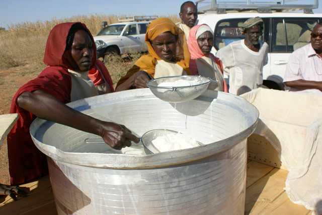 Quick-impact agriculture and livelihood intervention in Sudan