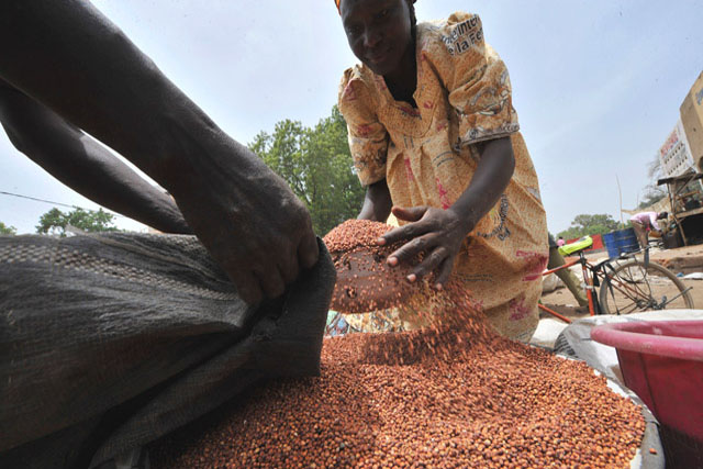 World food stocks to rise, but hunger risks persist in Sahel, Near East