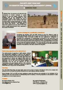 FAO-WFP Joint Roadmap on Disaster Risk Reduction/Management (DRR/M) in Burkina Faso