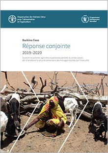 Burkina Faso 2019-2020 Joint Response (in FRENCH)