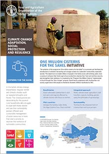 One million cisterns for the Sahel initiative