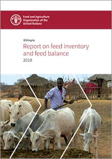 Ethiopia: Report on feed inventory and feed balance