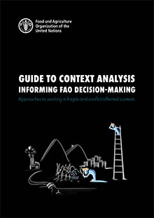 Guide to context analysis informing FAO decision-making