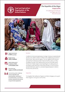 Strengthening the livelihoods of refugees and other displaced people in the Niger | Project profile