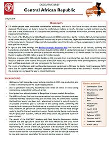 Central African Republic - Executive brief 24 April 2014