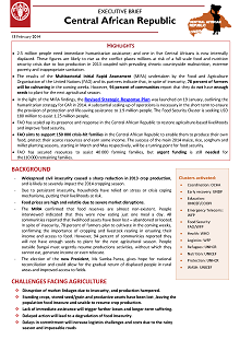 Central African Republic - Executive brief 13 February 2014