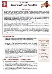 Central African Republic - Executive brief 27 January 2014